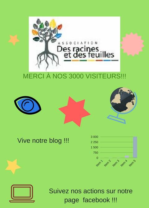 Merci à nos 3000 visiteurs(1).jpg