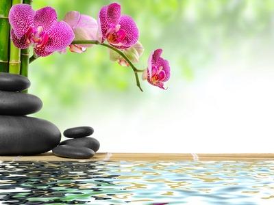 Zen-lâcher-prise-pendant-les-vacances-.jpg